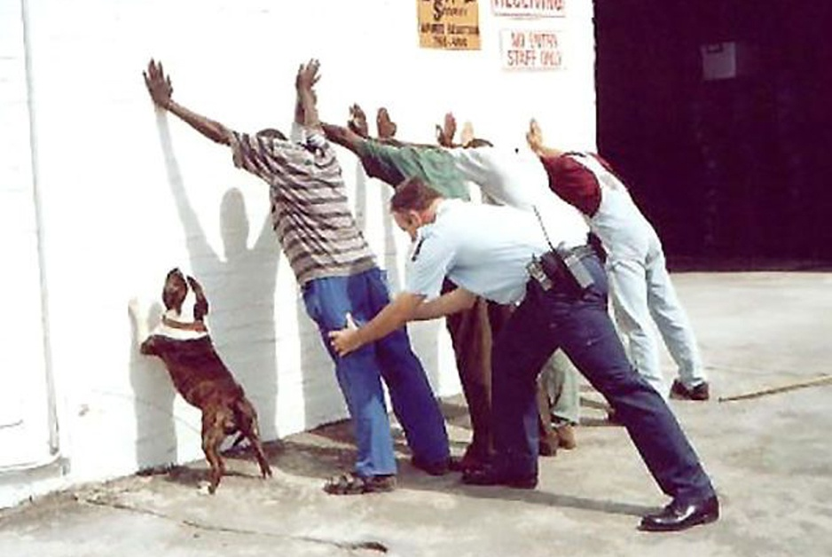 dog lines up, paws against the wall with people as cop searches everyone
