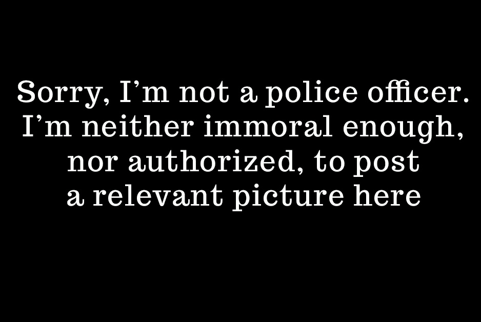 "text reading ""I'm not a police officer; I'm not authorized to create child porn"""