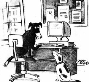 Cartoon: On the Internet, nobody knows you're a dog