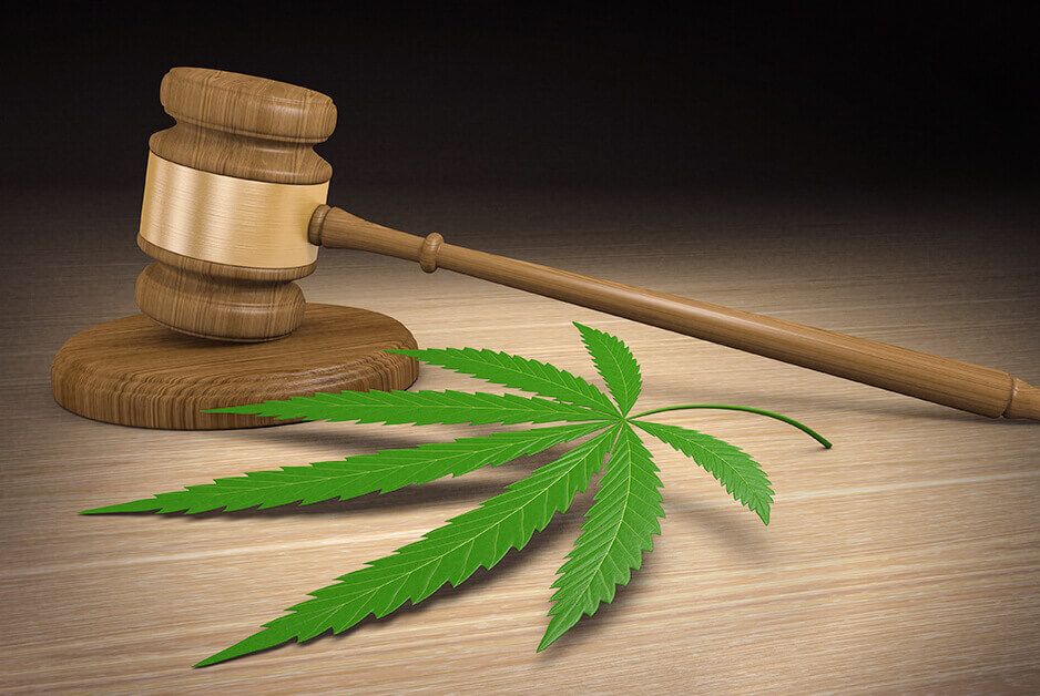 Marijuana, gavel - marijuana defense