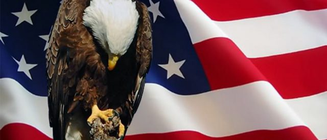 Memorial Day: Eagle & Flag