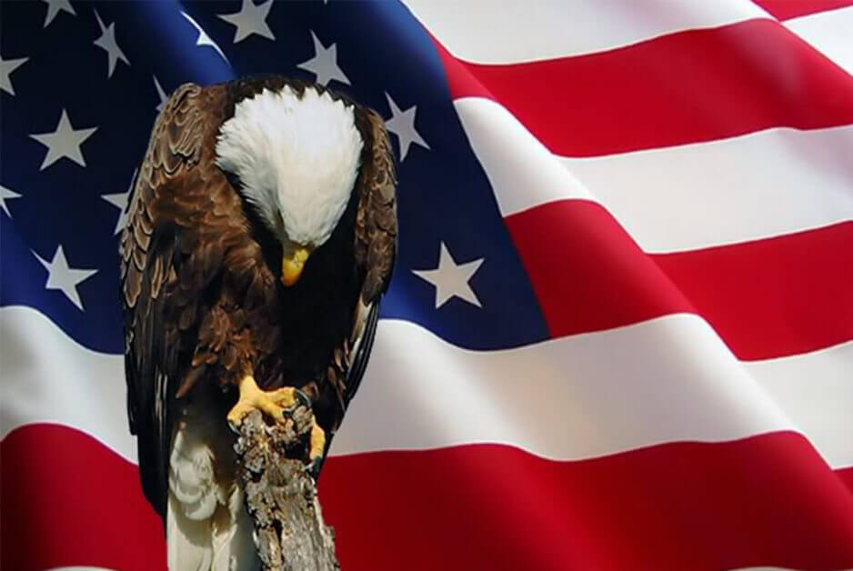 Memorial Day: Eagle & Flag